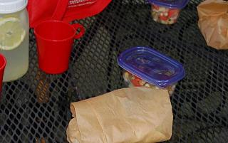 Click image for larger version  Name:Unpacking the Picnic.jpg Views:219 Size:49.7 KB ID:11534