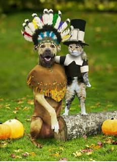 Click image for larger version  Name:DOG AND CAT HALLOWEEN.jpg Views:140 Size:30.0 KB ID:12170
