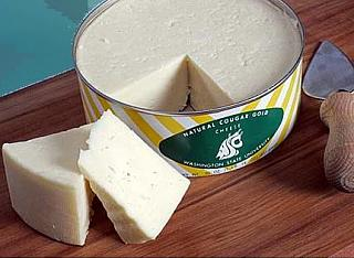 Click image for larger version  Name:cheese.jpg Views:223 Size:25.5 KB ID:13628