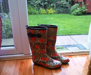 Click image for larger version  Name:wellies.jpg Views:151 Size:72.5 KB ID:14187