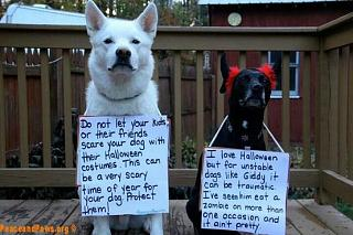Click image for larger version  Name:Halloween Message about Dogs.jpg Views:96 Size:43.0 KB ID:16108