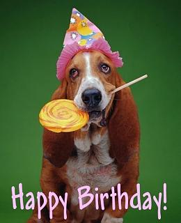 Click image for larger version  Name:happy-birthday-0098-dog.jpg Views:172 Size:33.8 KB ID:16280
