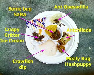 Click image for larger version  Name:BUGFEST2008A.jpg Views:170 Size:36.8 KB ID:17951