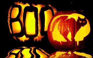 Click image for larger version  Name:boo.jpg Views:87 Size:152.8 KB ID:19315