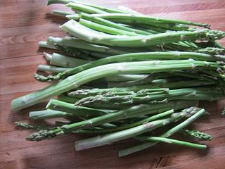 Click image for larger version  Name:Asparagus.jpg Views:161 Size:61.9 KB ID:21403
