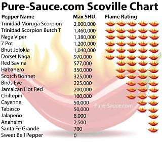 Click image for larger version  Name:scoville-scale.jpg Views:528 Size:74.0 KB ID:21606