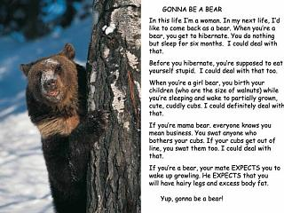 Click image for larger version  Name:Gonna be a bear.jpg Views:157 Size:71.0 KB ID:2225