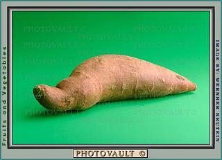 Click image for larger version  Name:Light Yellow Sweet Potatoes.jpg Views:134 Size:27.9 KB ID:2616