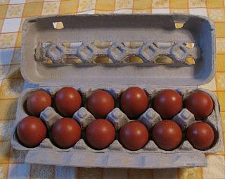 Click image for larger version  Name:Maran Eggs.jpg Views:73 Size:62.1 KB ID:27756