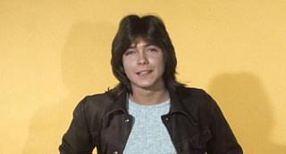 Click image for larger version  Name:david_cassidy.jpg Views:40 Size:57.8 KB ID:28488