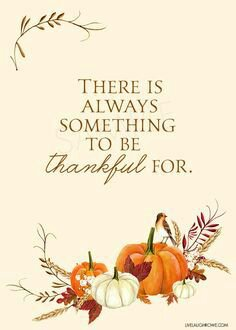 Click image for larger version  Name:6c657213428447cd178fa62068451871--thanksgiving-quotes-be-thankful.jpg Views:32 Size:14.2 KB ID:28492