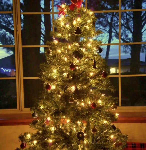 Click image for larger version  Name:Christmas tree 2017.jpg Views:26 Size:74.9 KB ID:28765