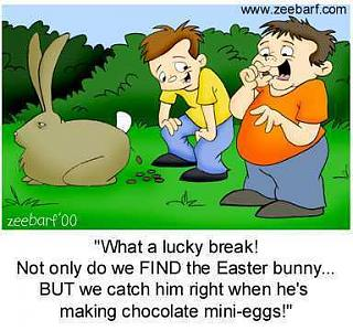Click image for larger version  Name:minieggs.JPG Views:33 Size:23.8 KB ID:29522