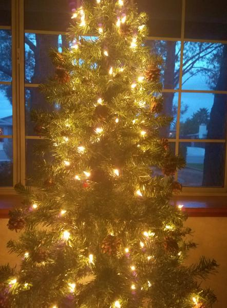 Click image for larger version  Name:Christmas Tree 2018 (2).jpg Views:19 Size:52.8 KB ID:32474