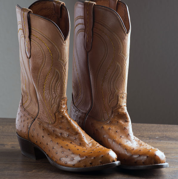 Click image for larger version  Name:Boots001.jpg Views:15 Size:98.4 KB ID:33123