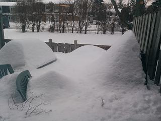 Click image for larger version  Name:Backyard snow 20190220_165417.jpg Views:96 Size:55.3 KB ID:33714
