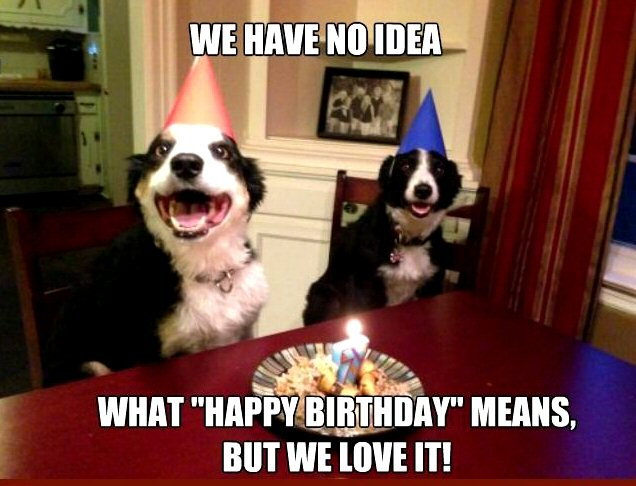 Click image for larger version  Name:happy_birthday_dogs.jpg Views:16 Size:62.7 KB ID:34112