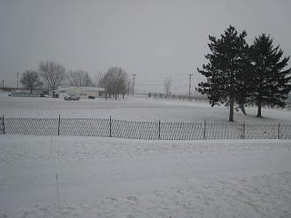 Click image for larger version  Name:outside my window.jpg Views:105 Size:49.1 KB ID:3425