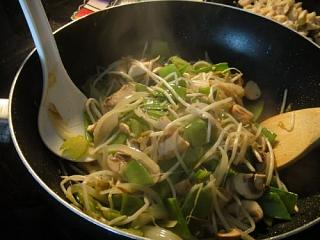 Click image for larger version  Name:Chicken Chow Mein 2.jpg Views:31 Size:56.8 KB ID:38734