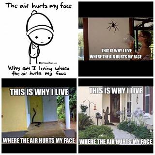 Click image for larger version  Name:air hurts my face and answers.jpg Views:80 Size:54.1 KB ID:39515