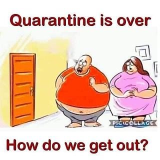 Click image for larger version  Name:Its Over!!!.jpg Views:37 Size:41.2 KB ID:40639