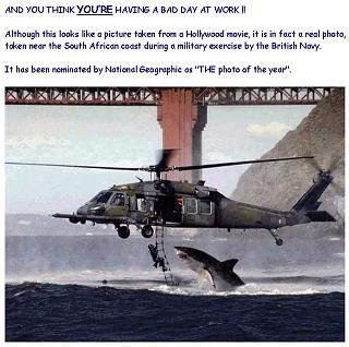 Click image for larger version  Name:image007.jpg Views:188 Size:148.6 KB ID:452