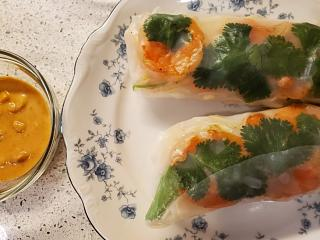 Click image for larger version  Name:summer rolls.jpg Views:11 Size:57.0 KB ID:46843