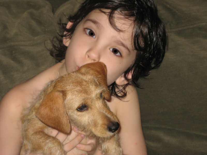 Click image for larger version  Name:fish&pup.JPG Views:88 Size:327.5 KB ID:4806