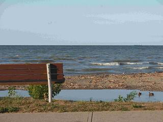 Click image for larger version  Name:Lake Erie 1 8-25-08.jpg Views:134 Size:57.2 KB ID:5076