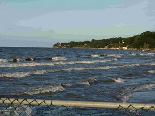 Click image for larger version  Name:Lake Erie 6 8-25-08.jpg Views:131 Size:59.2 KB ID:5081