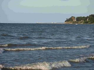 Click image for larger version  Name:Lake Erie 8 8-25-08.jpg Views:127 Size:61.7 KB ID:5083