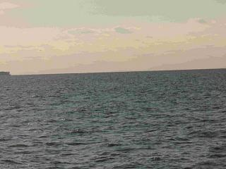 Click image for larger version  Name:Lake Erie 15 8-25-08.jpg Views:131 Size:53.4 KB ID:5090