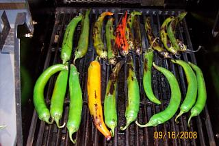 Click image for larger version  Name:Roasting Peppers(600 x 399).jpg Views:127 Size:87.4 KB ID:5437