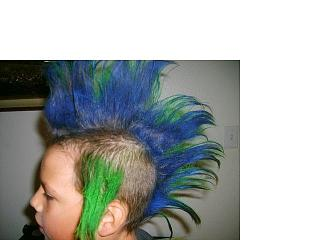 Click image for larger version  Name:Andrew and Hannah Hair 10.jpg Views:84 Size:29.1 KB ID:5569