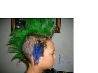 Click image for larger version  Name:Andrew and Hannah Hair 11.jpg Views:98 Size:26.6 KB ID:5570