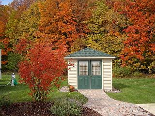 Click image for larger version  Name:Fall 2006 Gloria's tree.jpg Views:119 Size:110.0 KB ID:5767
