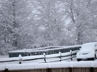 Click image for larger version  Name:snow 11-21.jpg Views:123 Size:78.8 KB ID:6107