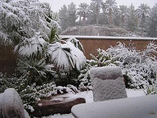 Click image for larger version  Name:SNOWFALL DEC. 2008 011.jpg Views:118 Size:123.0 KB ID:6353