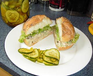 Click image for larger version  Name:PicklesWSandwich.jpg Views:240 Size:369.8 KB ID:7517