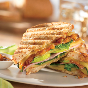 Name:   Chutney_Ham_and_Cheese_Panini.jpg Views: 264 Size:  96.7 KB