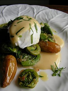 Click image for larger version  Name:fiddlehead recipe.jpg Views:167 Size:52.0 KB ID:8104