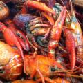 Boiled Crawfish sent in from Deanie's in New Orleans
