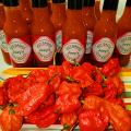 Carolina Reapers  Hottest of all peppers!